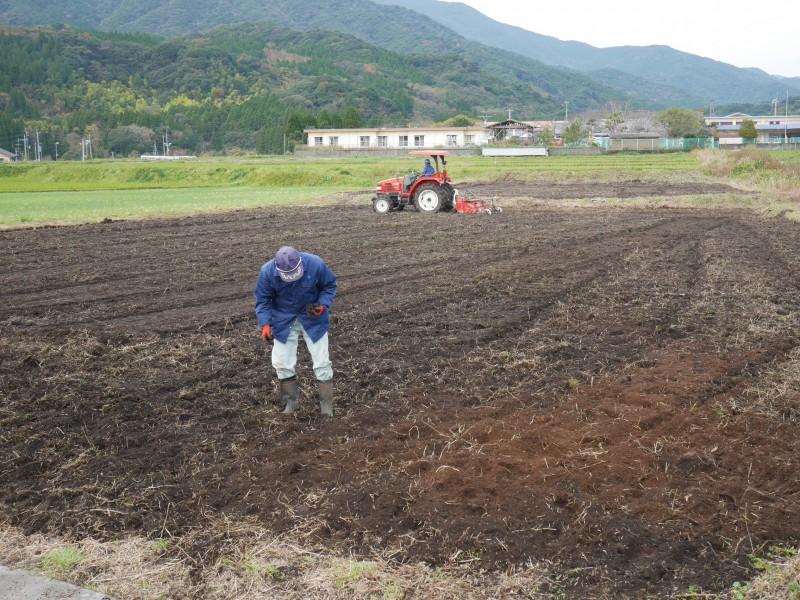 高隈 耕作放棄地