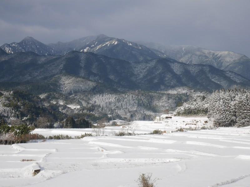 高隈 冬景色3